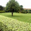 Vester-Gardens-5